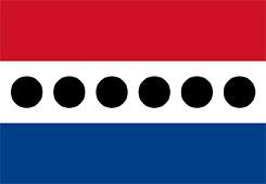 UDPflag