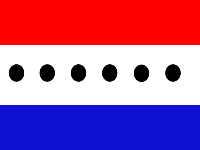 udp_flag